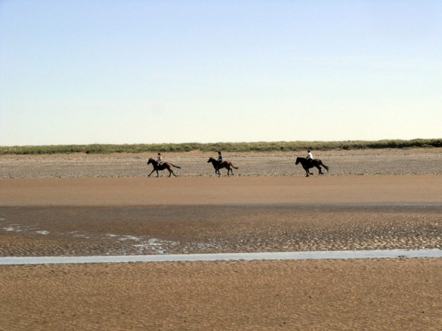 Horse Riding Allonby Beach